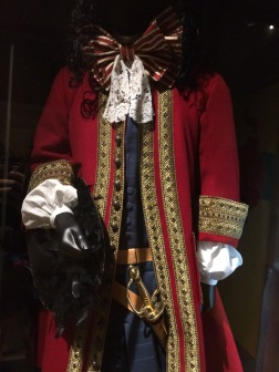 A highly-detailed captain's costume...probably based off of a certain Neverland pirate...