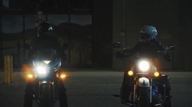 Night shot of Ziggy and Nixie